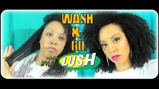 Wash & Go Using LUSH Handmade Hair Care! Natural Hair