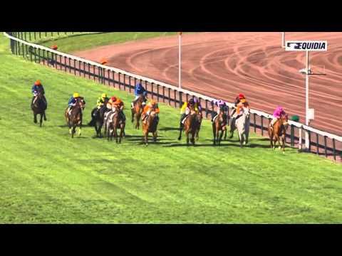 Vidéo de la course PMU PRIX DE CARRY