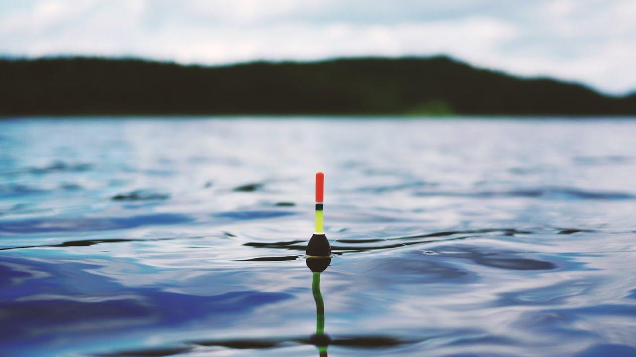 все о секретах рыбалки на карася