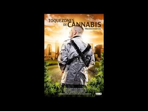TOQUEZONES DE CANNABIS(PROXIMAMENTE)- EL KOMANDER 2013-MOVIMIENTOALTERADO.COM