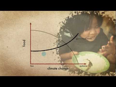 How to feed the world in 2050: actions in a changing climate