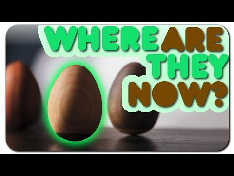Zen Egg  Where are they NOW