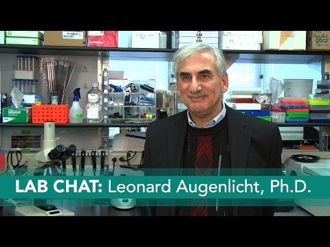 The Western Diet and Colon Cancer: Lab Chat with Leonard Augenlicht, Ph.D.