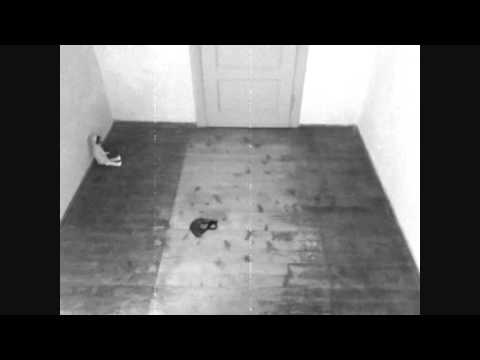 Waverly Hills Sanatorium (1928): Ghost in Room 502 (Haunting Caught on Camera)