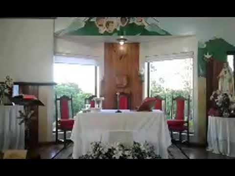 Santa Missa | 24.11.2020 | Terça-feira | Padre Francisco de Assis | ANSPAZ