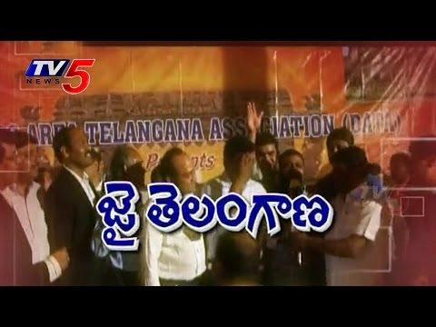 Telangana Formation Day celebrations in Dallas : TV5 News