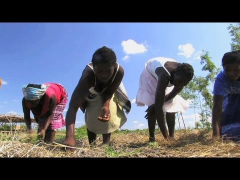 Earth Focus Episode 47 - Africa: Climate for Change