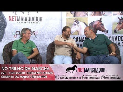 #26 - NO TRILHO DA MARCHA - NET MARCHADOR 19/03/2018 - MANGALARGA AMRCHADOR