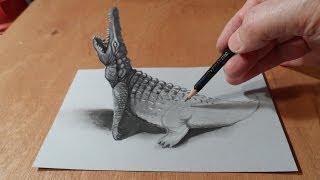 How to Draw Crocodile - Drawing 3D Crocodile - 3D Trick Art - By Vamos