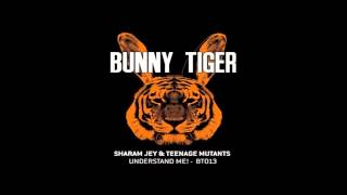 Sharam Jey & Teenage Mutants - Understand Me! (Original Mix) view on youtube.com tube online.