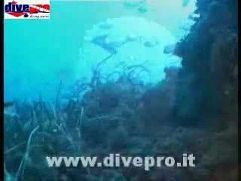 Immersione sul Cristo di Mazara del Vallo Divepro Diving Cen