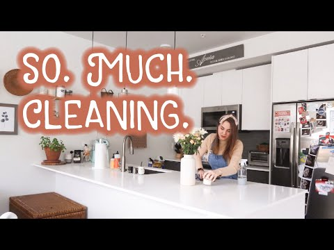 Decorating my Apartment, Organizing my Fridge, Plants! | GETTING MY LIFE TOGETHER