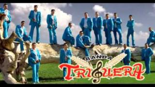 Amor intocable (audio) Banda Triguera