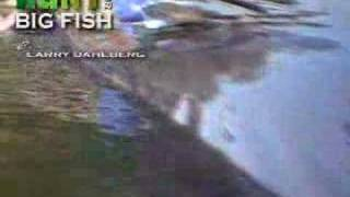 Over 400 Lbs Amazing Huge Catfish Caught Ever!