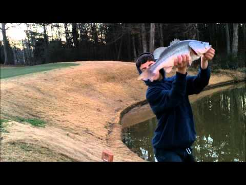 Winter Pig - My Biggest Bass Ever!!