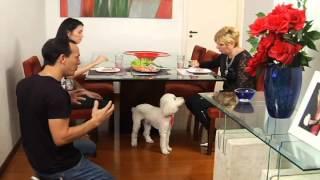 Jean Cloude tenta reabilitar um poodle que se sente dono do peda�o (parte 2 de 2)