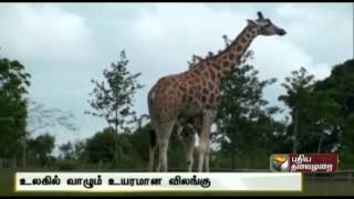 Fascinating Facts (22-07-2014)