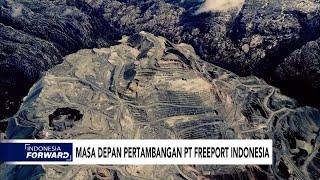 Masa Depan Pertambangan PT Freeport Indonesia