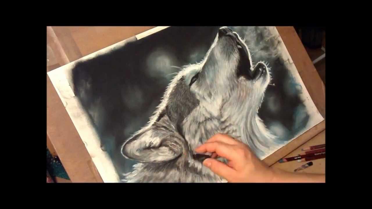 how to draw webkinz animals
