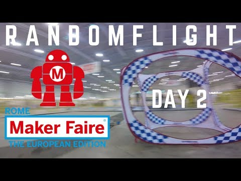 idiotic moments - day 2  #MFR19 - ShockWave fpv