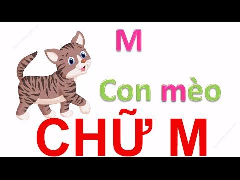 Dạy bé học bảng chữ cái tiếng việt qua bài hát | em tập đọc các con vật | Dạy trẻ thông minh sớm 2