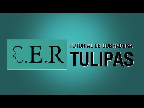 Tutorial de Dobradura – Tulipa