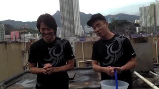 歲月友情 鄭伊健 Ice Bucket Challenge YouTube 影片