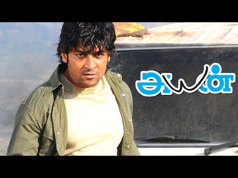 Ayan Full Movie Fight scenes | Surya Fight scenes | Surya Mass Scenes | Kollywood Best Fight Scenes