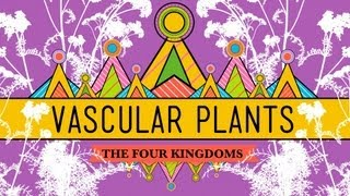 Crash Course Biology: Vascular Plants