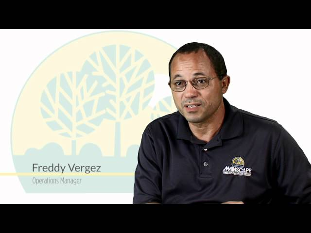 Freddy Vergez