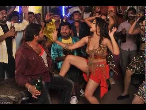 Swetha Basu Prasad Item Hot Song In Intelligent Idiots Movie Video