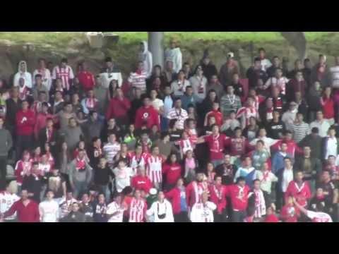 Adeptos do Leixões em jogo com o Vitória de Guimarães