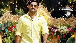 Jr NTR Baadshah Movie Working Stills - Photo Play