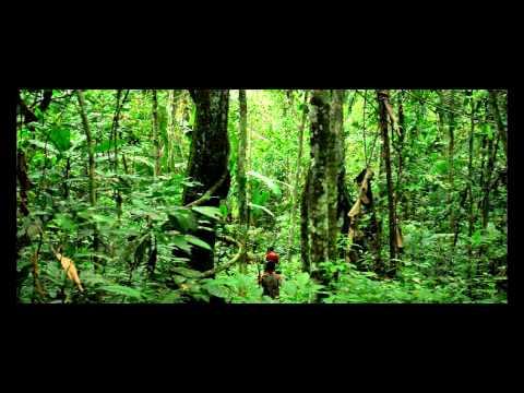 NUKAK MAKU. Un Pueblo Indígena en via de extinción.