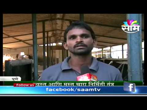 Uttam Machale dairy and hydroponics technology success story