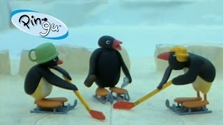 Pingu: Pingu Plays Hockey