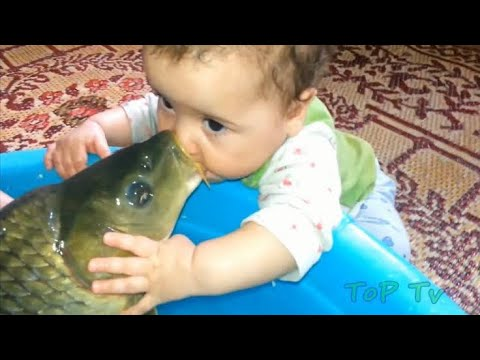 Funny video - Baby playing with fish