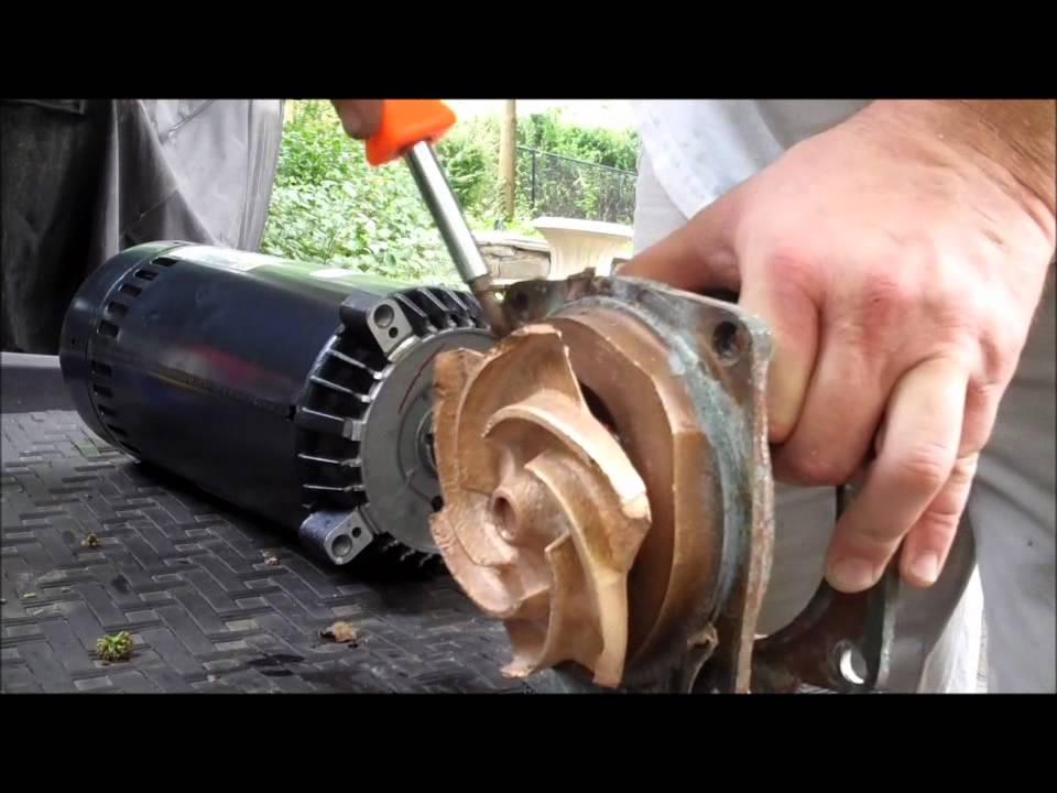 Anthony sta rite bronze pool pump motor replacement for Sta rite pump motor replacement