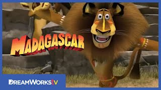 "DreamWorks Animation's ""Madagascar: Escape 2 Africa:"