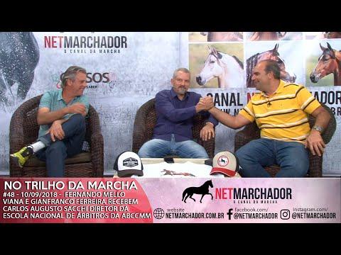 #48 - NO TRILHO DA MARCHA - CARLOS AUGUSTO SACCHI - MANGALARGA MARCHADOR