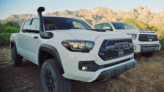 2019 Toyota TRD Pros – Ultimate Off-Road Performance. YouCar Car Reviews.