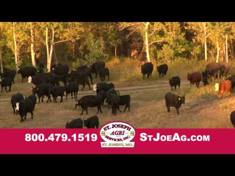 Buy Cattle Feed St. Joseph Missouri - St. Joseph Agri Services