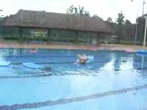 Funny Swimming Pool Youtube