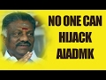 No one can hijack AIADMK - Panneerselvam..