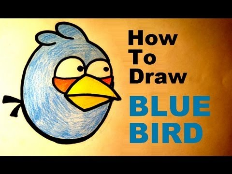 how to draw a bluebird