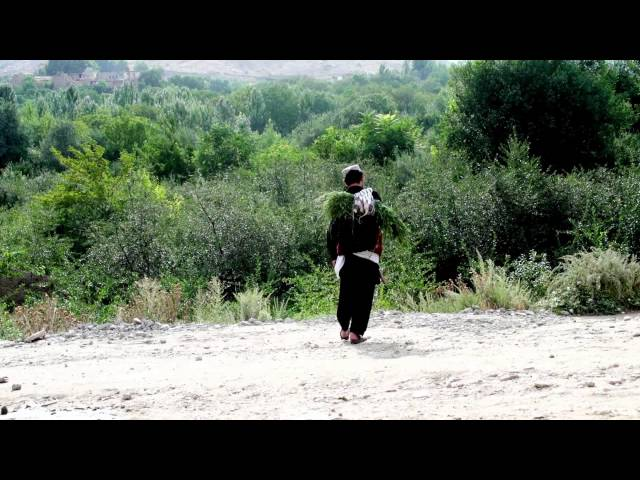 new song afghani 2013 full hd ahmad naseer sakhi