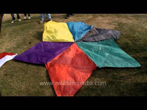 Colourful flower kites at International Kite Festival 2014, New Delhi
