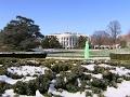 Raw: White House Fountain Goes Green