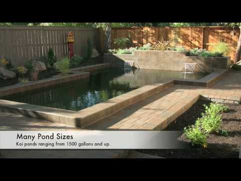 Koi Fish Ponds Design Construction Equipment Supplies In Loomis Sacramento Ca With Online