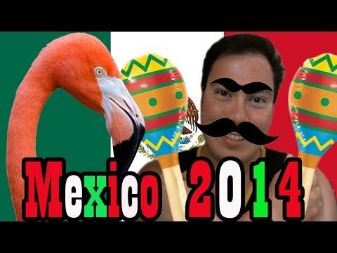 My Mexico Trip